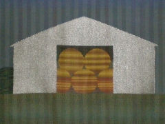 Shed with Bales